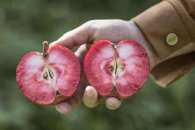 Люди покупают розовый сидр чаще и чаще